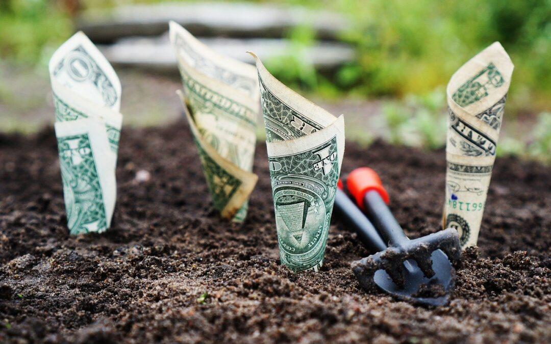 Dans quoi investir? Voici quelques pistes !